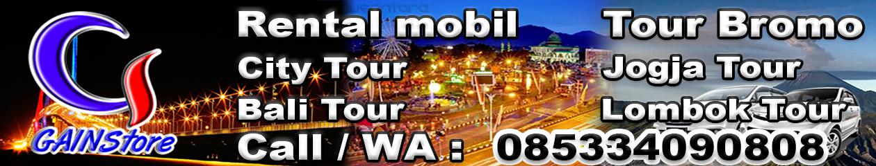 GAINStore | Tour's & Travel, Jual Kaos, Rent car, Baterai ...